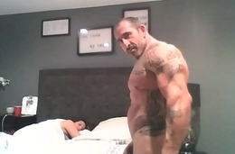 Muscle bull bonking get hitched